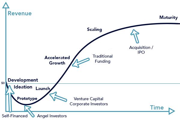 Startup Phases