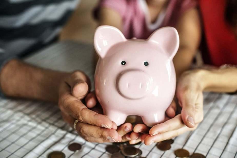 Startup Funding Pig